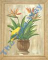 Yellow Parrot in Bird of Paradise (8x10)