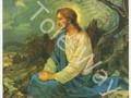 Jesus On MT. Olive (8x10)
