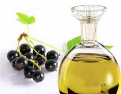 Black Current Seed Oil