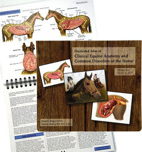 Book: Illustrated Equine Anatomy Volume 2