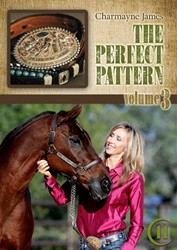 Charmayne James The Perfect Pattern 3