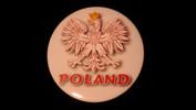 "Poland's Eagle | 3 1/2"" Magnet"