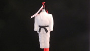 Martial Arts Dobok - Black Belt