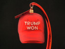 Trump Won Ball Cap