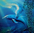 Dancing Dolphin Gutenberg Fine Art Print