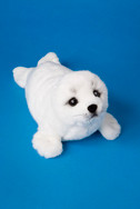 Twinkle White Seal
