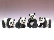 Four assorted pandas