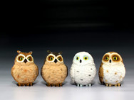 Four assorted owls