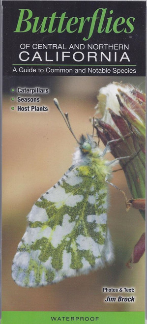 Field Guide for Butterflies- California