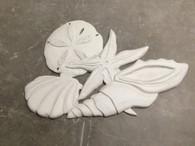 Multi Shells Stucco Art