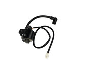 Generac Ignition Coil Assembly 10000038256