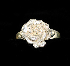 Full front view of solid sterling ring