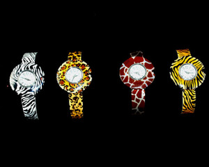 Zebra, Leopard, Giraffe and Tiger pattern hinged