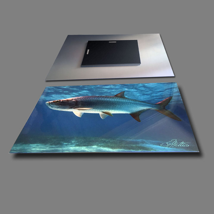 jason-mathias-metal-photography-print-tarpon.jpg