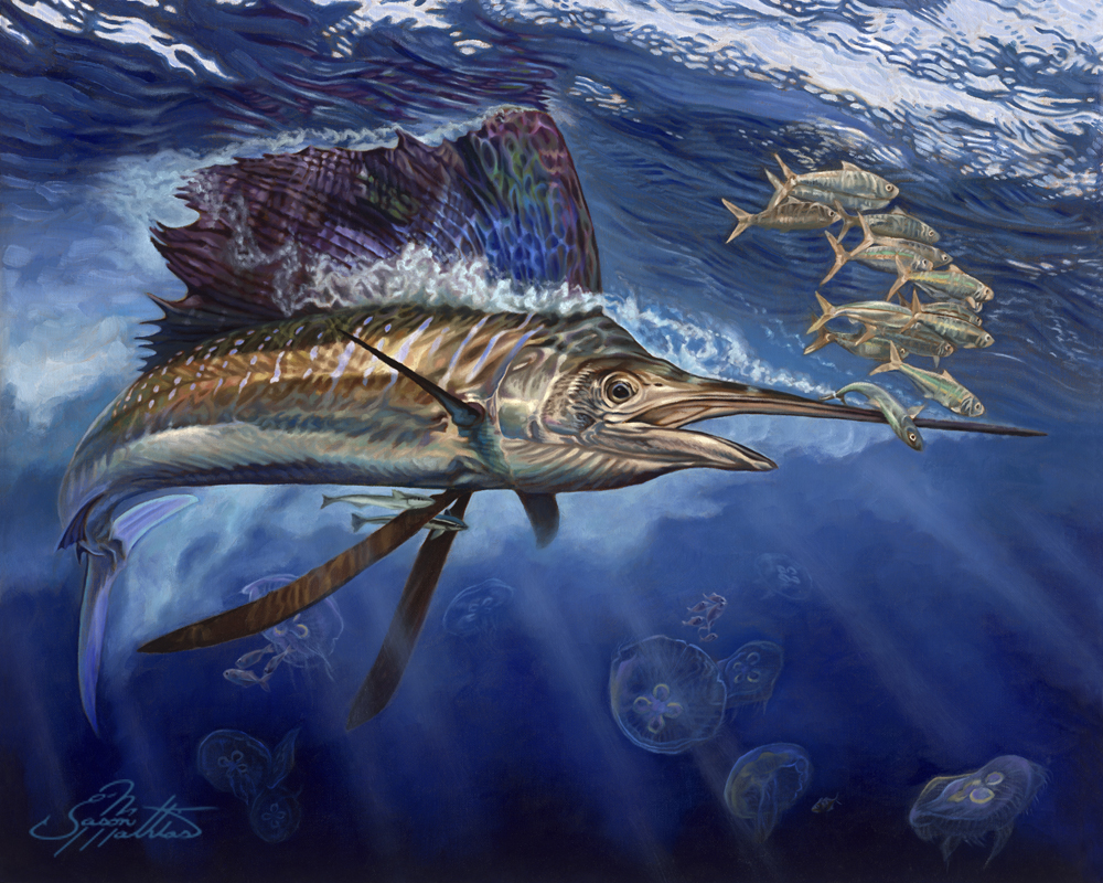 sailfish-jason-mathias-art-majesty.jpg