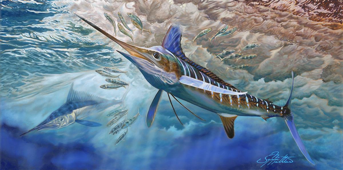 white-marlin-art-jason-mathias-gamefish-sportfish-fish-art.jpg