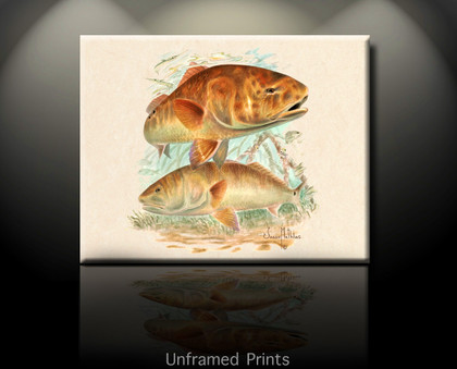 """Unframed Prints Reds Undercover"" by artist Jason Mathias masterfully portrays two husky bronze Redfish stalking the shallow mangrove shoreline."