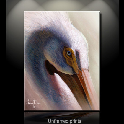 """Unframed fine art prints"" of White Pelican by artist Jason Mathias, a stunning White Pelican painting depicted in it's spectacular natural beauty using Acrylic on board."