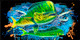 Jason Mathias Heavy Duty Aluminum Metal License Plates! Artwork of a Mahi Mahi, Dorado or Dolphin is Featured in a Radiant Shiny High Gloss! A perfect gift for the avid fisherman who enjoys sportfishing, gamefish and art.