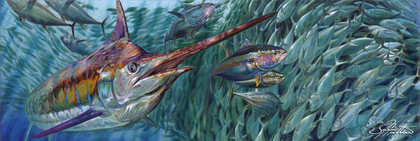 In this vision, skilled artist Jason Mathias masterfully portrays a massive Blue Marlin lighting up with a unique color pallet as he muscles his way through a massive Yellowfin tuna baitball.