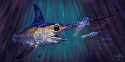 """In this vision, skilled artist Jason Mathias masterfully portrays an elusive Broadbill Swordfish dominating a school of squid in it's deep water realm.ORIGINAL: Traditional painting,""""15x30"""" oil on canvas."""