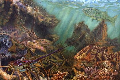 In this vision, skilled artist Jason Mathias masterfully portrays three brilliant Spiny Lobster blending into the warm, shallow grassy ledges with a camouflaged hogfish.