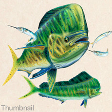 "(Original) ""Mahi Mahi"" (SOLD)"