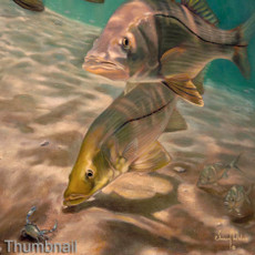 """(Original) """"Summertime Snook"""" (Available)"""
