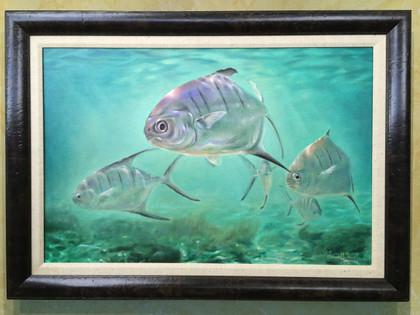 Original Palometa Pompano painting. Jason Mathias art