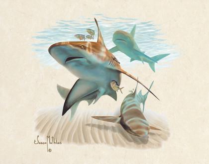 In this vision, skilled artist Jason Mathias masterfully portrays a hulky Sandbar Shark patroling the coastal sandy shoreline for a meal.