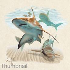 "(Original) ""Sandbar Shark"" (Available)"