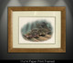 """Framed mini paper prints"" In this vision, skilled artist Jason Mathias masterfully portrays a beautiful and accurate rendition of a natural ambush featuring a most prized species, the Fluke or Summer Flounder."
