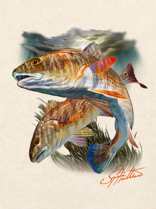 In this vision, renowned artist Jason Mathias portrays two husky bronze Redfish stalking the shallow grass flats.  Original available, original medium acrylic on board.   Printing: Jason Mathias fine art prints use professional fade resistant Giclee inks and a range of high quality papers and canvases resulting in beautiful, fully archival prints with incredibly fine detail. Giclée uses water-soluble pigments rather than the dye-based inks used in traditional printing and other forms of ink-jet. Giclée pigments match original pigment-based media and remain true without fade for over 75 years. The artist applies a texturing protective UV coating for all canvas prints only.