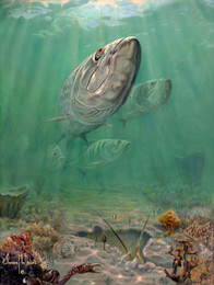 In this vision, skilled artist Jason Mathias masterfully portrays A school of Tarpon as they patrol over a lobster hole in the murky shallows looking for prey as they continue with their migration.  Printing: Jason Mathias fine art posters are created from a lithograph printing process. A traditional printing process that has proven its value through time.