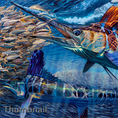 """White Night"" (White Marlin & BaitBall)"