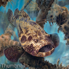 """""""Art prints"""" by artist Jason Mathias masterfully portrays a hulking Jewfish or """"Goliath Grouper"""" standing guard over an old structure."""