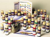 Chroma Airbrush Paint Set