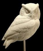 Study Cast - Owl, Screech