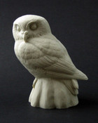 Study Cast - Owl, Elf
