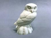 Study Cast - Owl, Elf