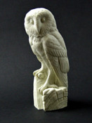 Study Cast - Owl, Barn