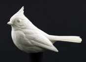 Study Cast - Titmouse