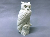 Study Cast - Owl, Great Horned