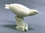 Study Cast - Osprey