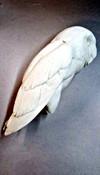 Study Cast - Barn Owl (1/3 size)