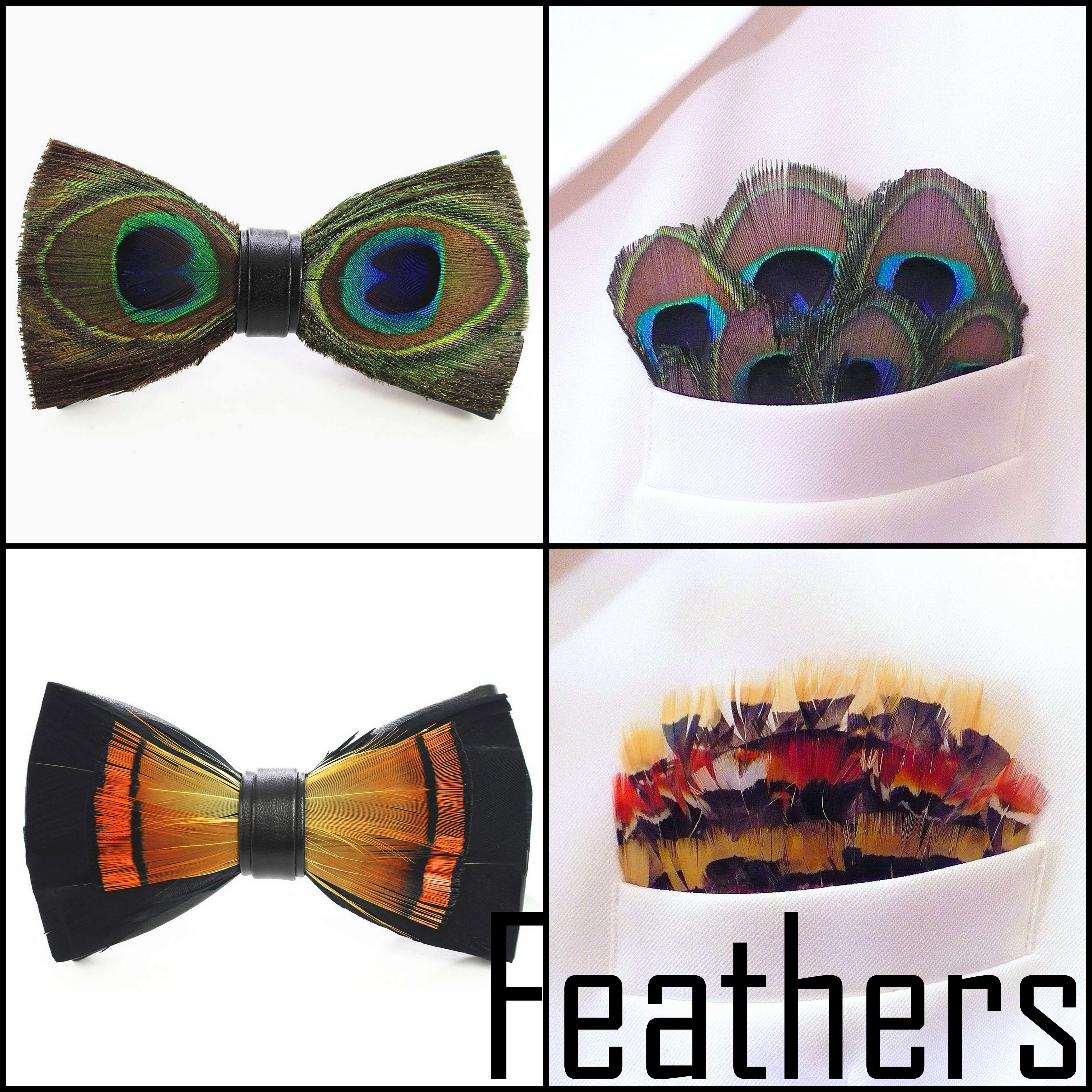 feather-1-pix.jpg