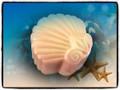 Sea Opal