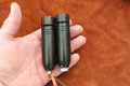 Mini Buffalo Horn Special Offer