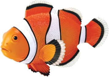 4-D Puzzle - Clownfish