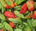 Red and Green Pimento peppers
